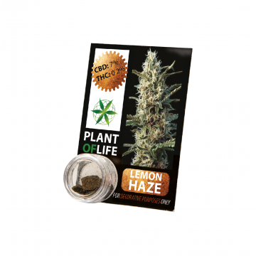 Plant Of Life | Lemon Haze 3,8% CBD Solid