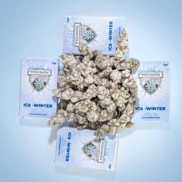 Weedbase | Ice Winter ± 50% 1gr