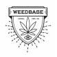 Weedbase | Ανθός White CBD ± 14% 1gr