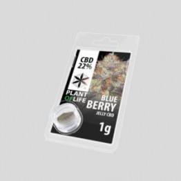 Plant Of Life Blueberry 22% CBD Jelly