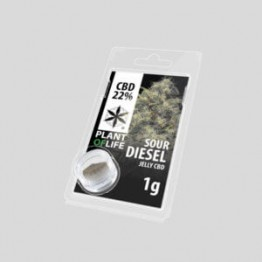Plant Of Life | Sour Diesel 22% CBD Jelly